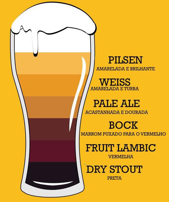 Tudo sobre cerveja tipos e cores