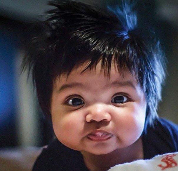 bebês super cabeludos