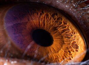 Olho do Chimpanzé